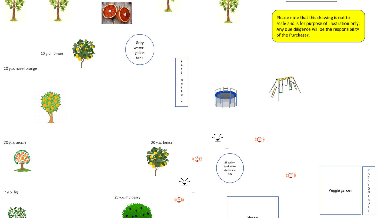 _Orchard-map---86-Tilly-Final-Version-4-